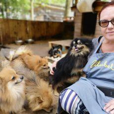 Pārdaugavā kādā dzīvoklī kārtības sargi izņem 58 suņus.