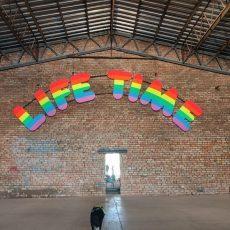 Arī no Ulubeles adoptētā Olga piedalījās Starptautiskajā mākslas biennālē #rigabiennal
