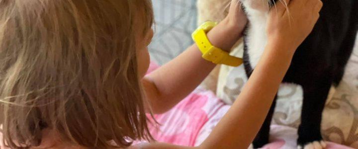 ULUBELES CILVĒCĪBAS SKOLIŅA – unikāls projekts bērniem no 6-13 gadiem, kas notiek jau ceturto vasaru!